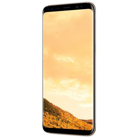Смартфон Samsung Galaxy S8 64Gb (желтый топаз)